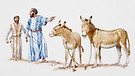 Praise, Thanksgiving and Worship (9): Receiving the King of Glory (the Donkey and the Colt)